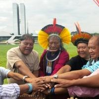 A Aliança dos Guadiões da Amazônia- Gert-Peter BRUCH